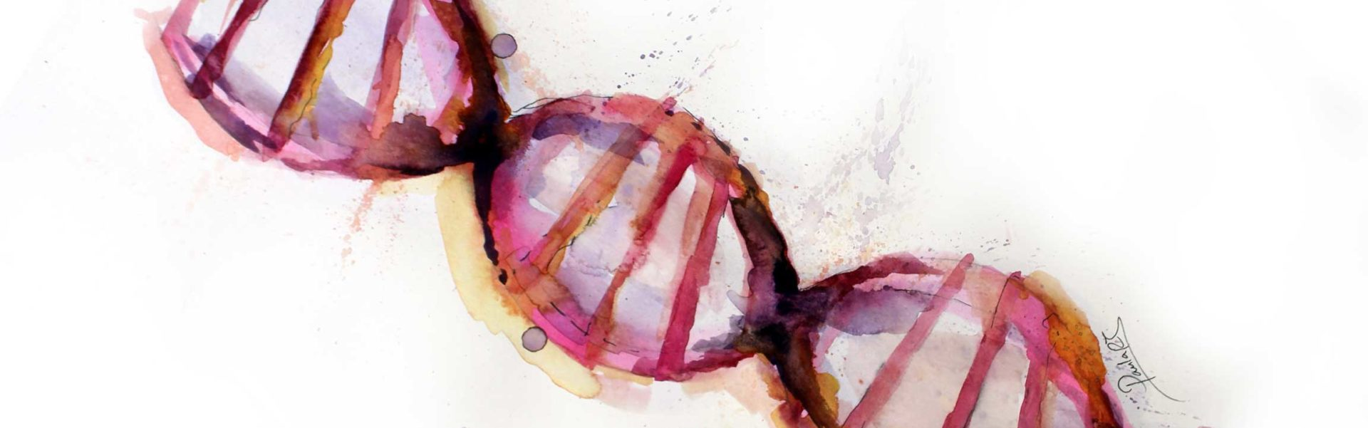 Plataformas Genómicas
