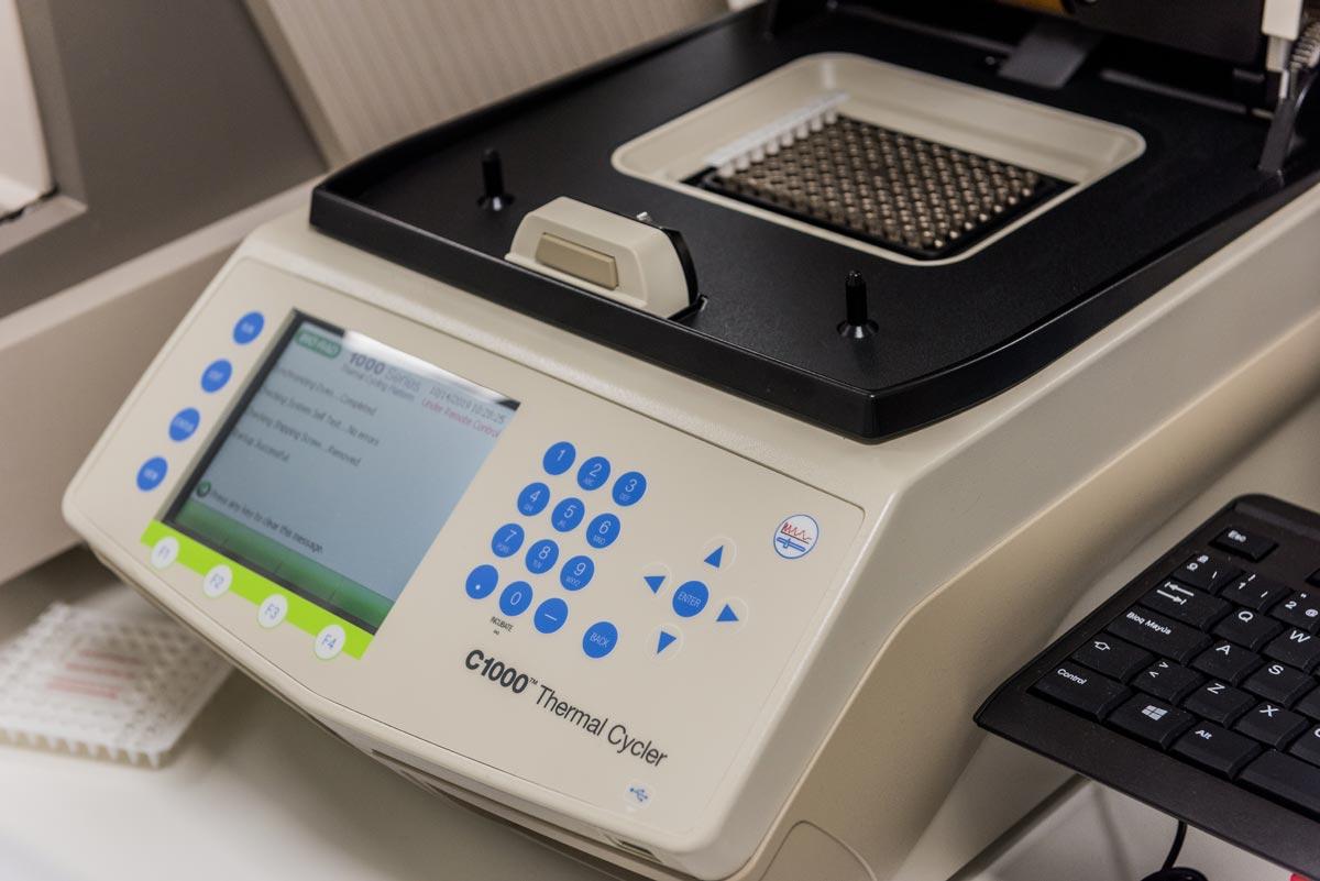 PCR para detección Coronavirus