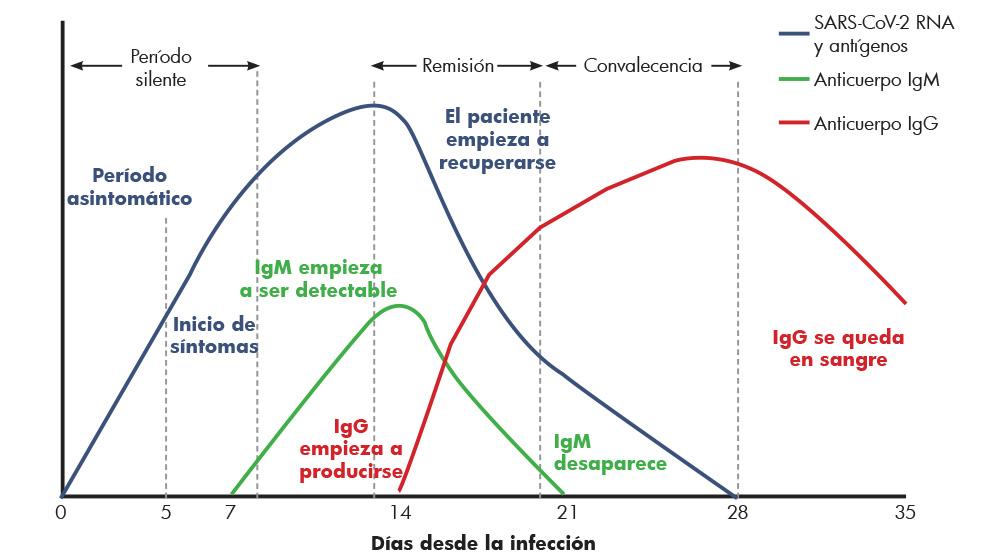 gráfica infección Coronavirus